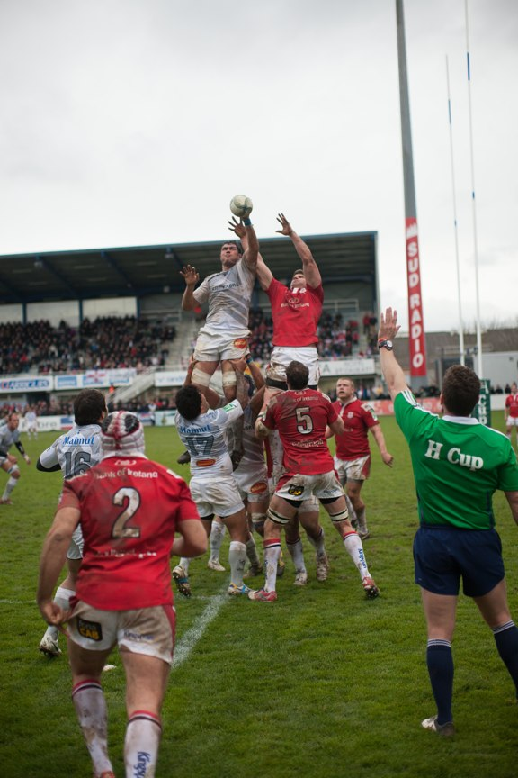 Rugby - Stade Toulousain or Castres Olympique